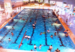 Swimming Pool Complex Picture
